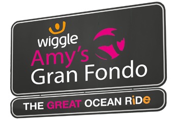 Wiggle-Banner